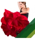 Jupe de Danse Femme