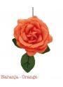 Fleur De Flamenco Coulours