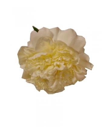 Flor grande SE