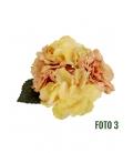 Fleurs oeillet de flamenco